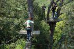 Sortida a El Bosc Vertical
