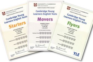 20130612123701.yle Certificates